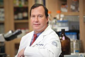 Dr. Schlegel